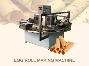 main picture of egg roll machine