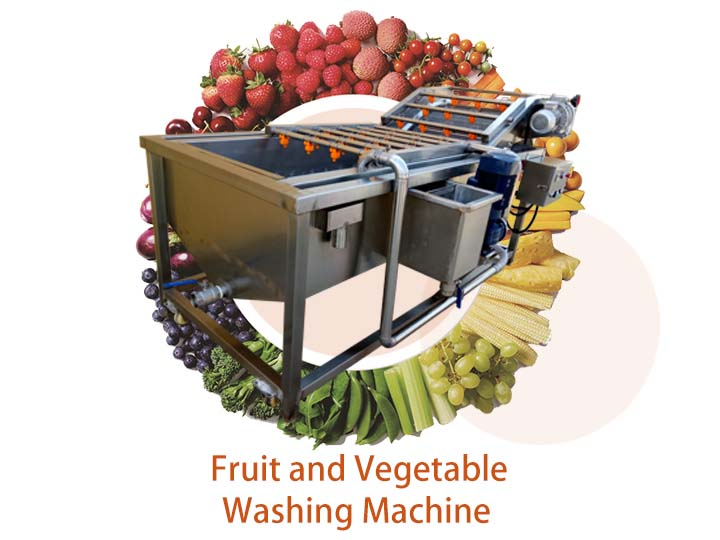 vegetable and fruit washing machine (2)