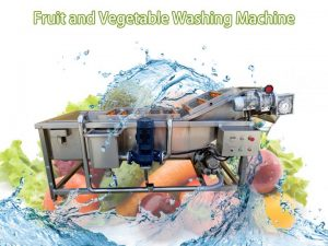 vegetable and fruit washing machine (3)