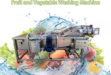 vegetable and fruit washing machine (3)