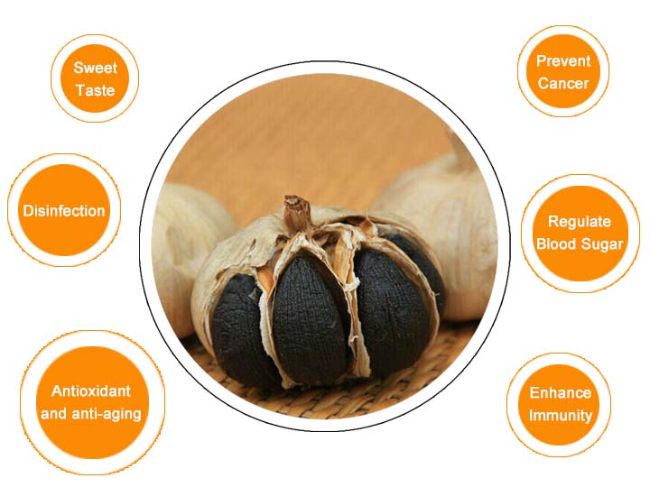 Black garlic effect
