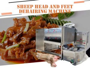 Sheep head and feet hair removing machine