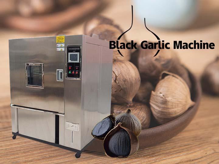 black garlic fermentation machine (2)