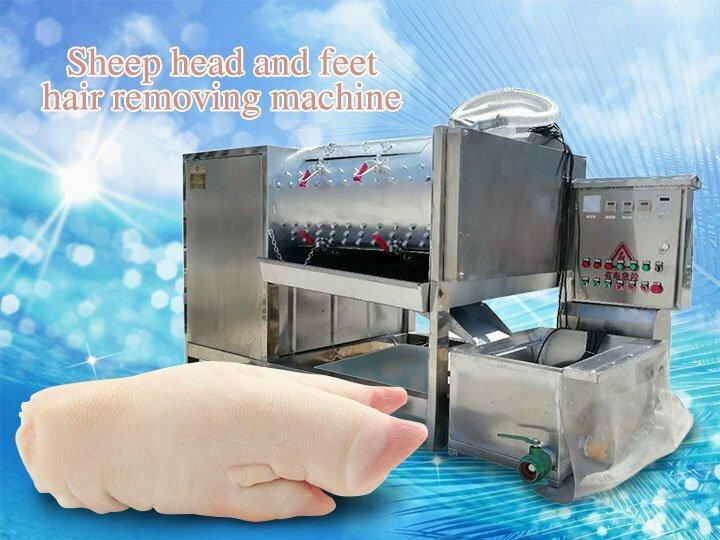 sheep head and feet dehairing machine (2)