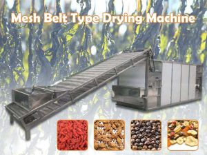 mesh belt drying machine