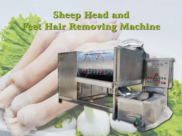 sheep head and feet hair removing machine