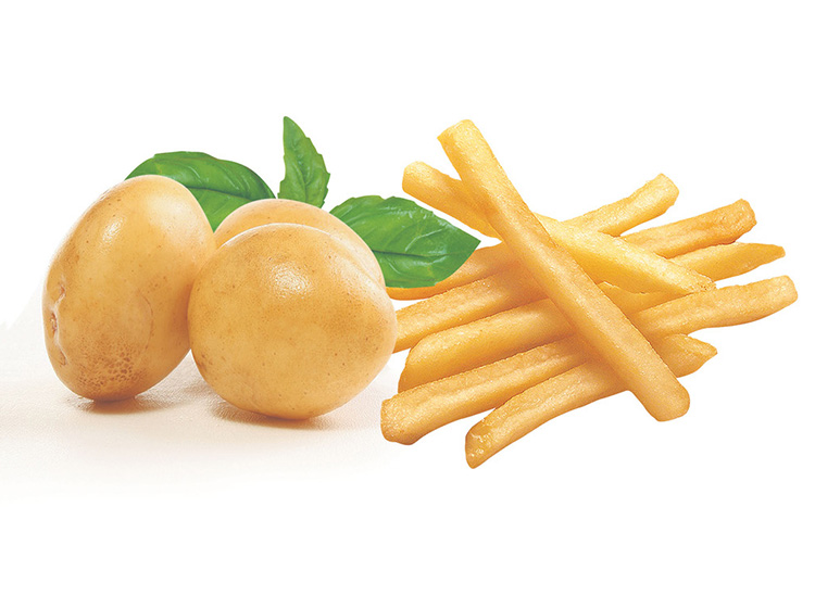 French fries processing