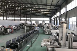 Taizy frying machine factory