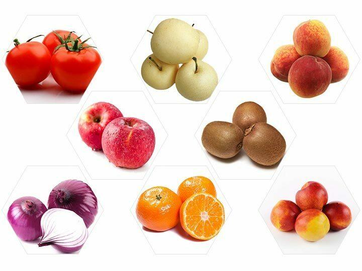 Fruit size sorting machine application
