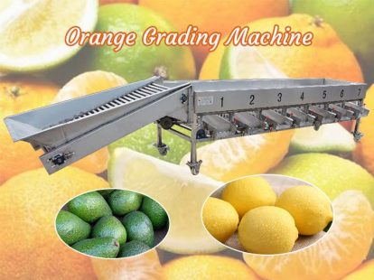 orange grading machine